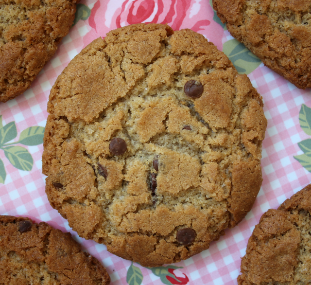 peanut butter chocolate chip cookies gluten free