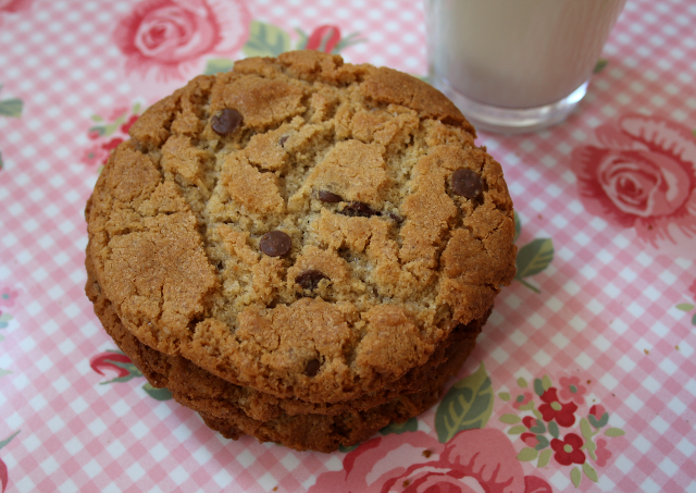 peanut butter chocolate chip cookie gluten free
