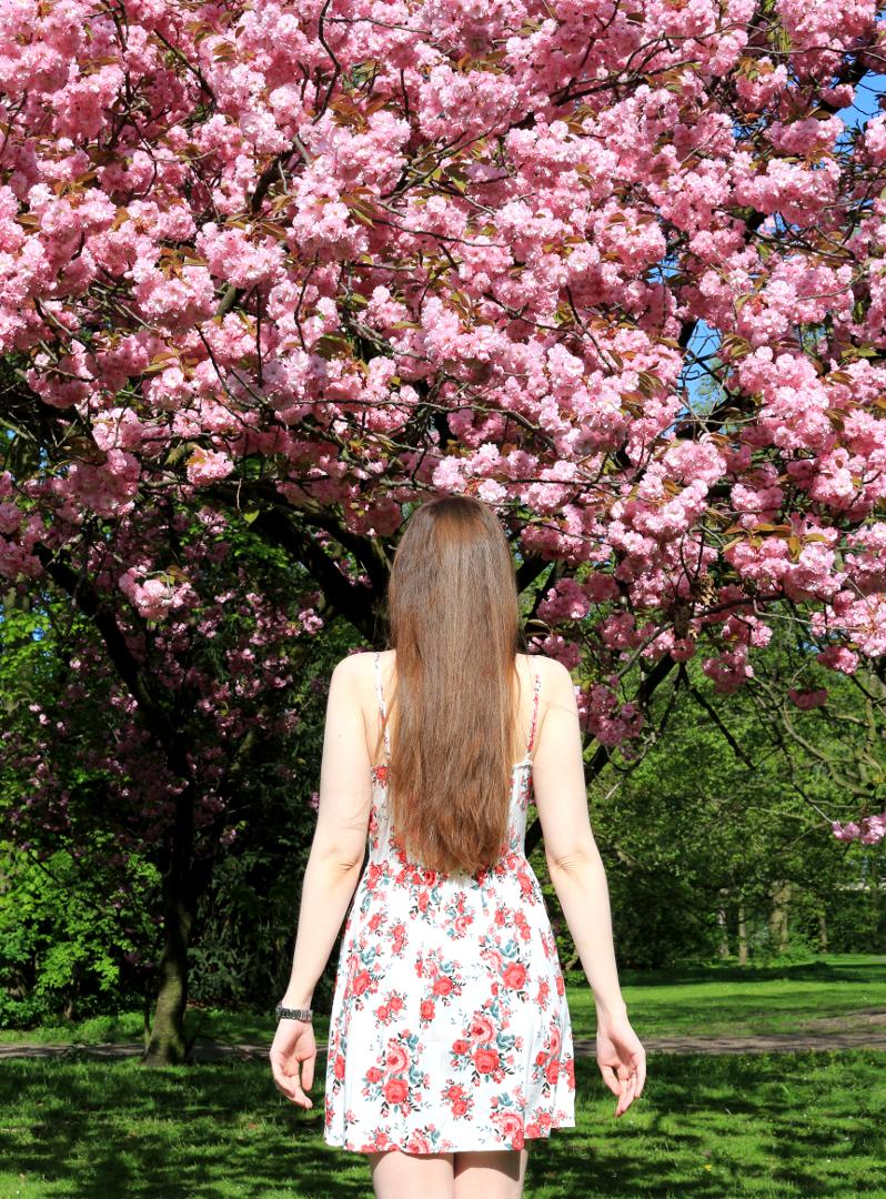 Cherry Blossom Dress Fashion