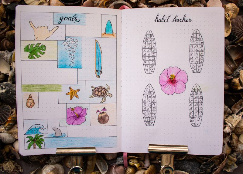 Bullet Journal Goals Habit Tracker Surfing Hawaii