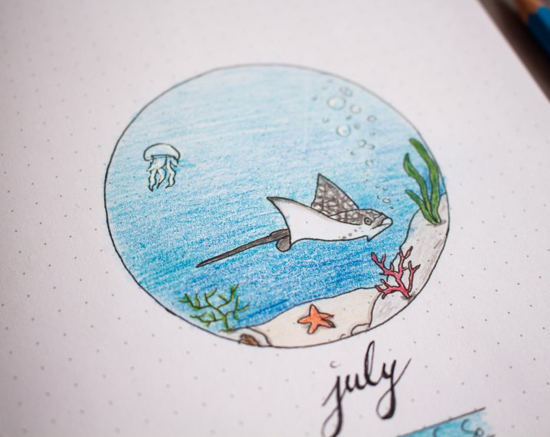 Bullet Journal July under water