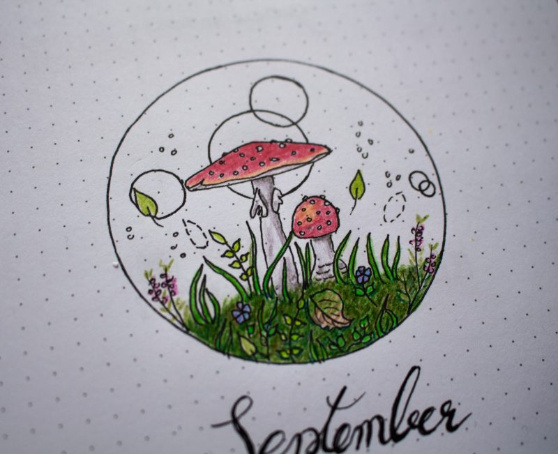 BuJo September cover mushrooms